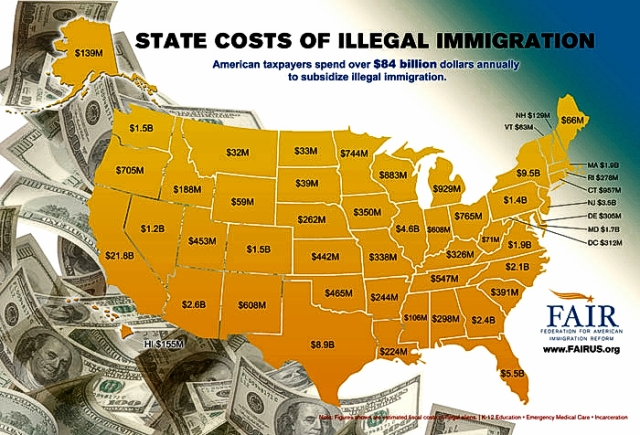 Cost of illegals