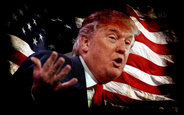 Donald-Trump-Hair-flag- sml