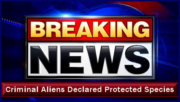 Aliens declared protected species